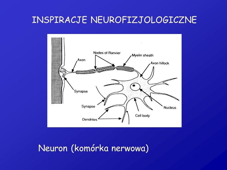 INSPIRACJE NEUROFIZJOLOGICZNE Neuron (komórka nerwowa)
