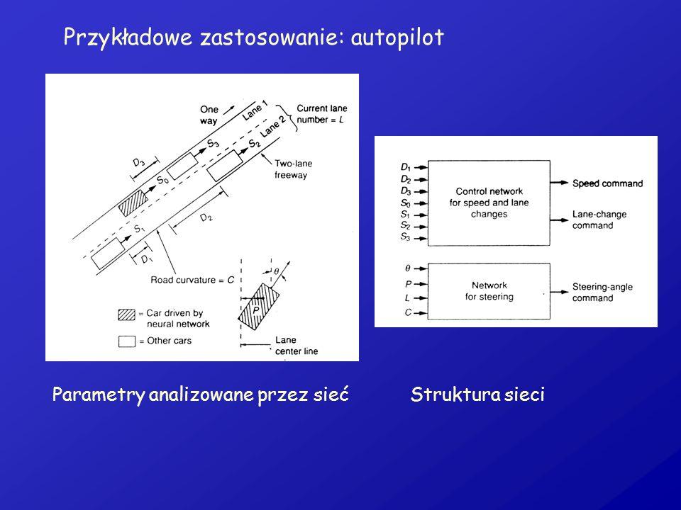 Przykładowe zastosowanie: autopilot Parametry analizowane przez siećStruktura sieci