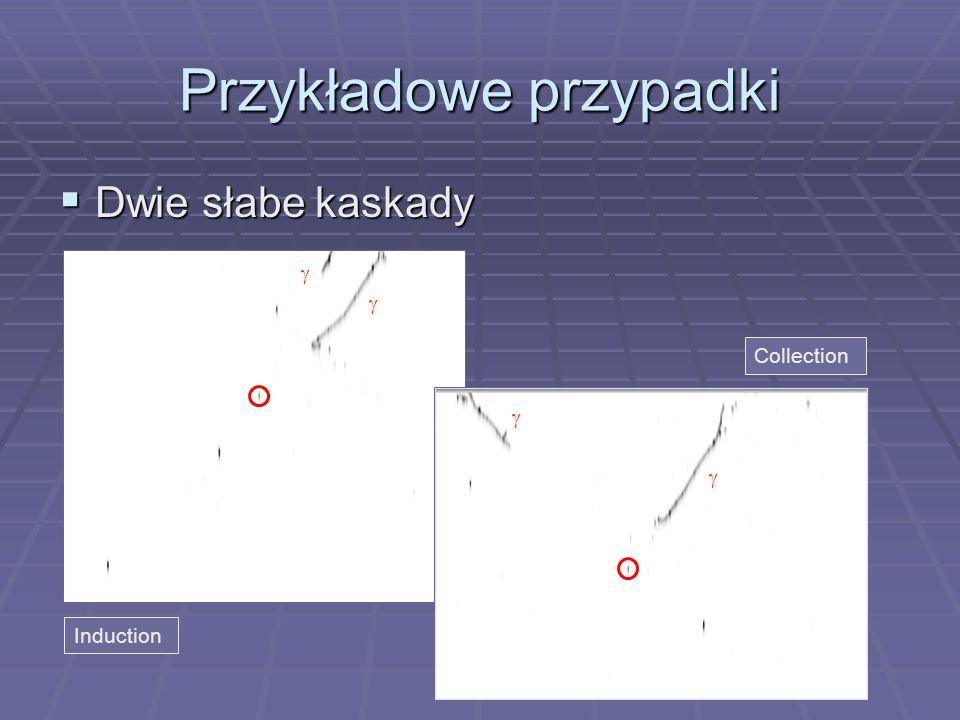 Przykładowe przypadki Dwie słabe kaskady Dwie słabe kaskady Induction Collection