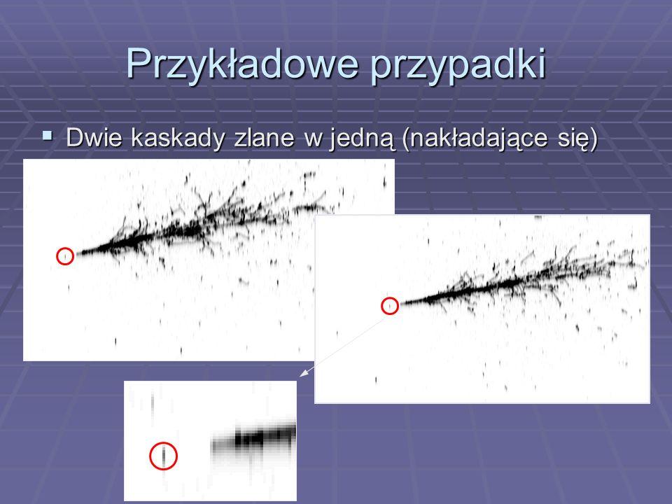 Przykładowe przypadki Dwie kaskady zlane w jedną (nakładające się) Dwie kaskady zlane w jedną (nakładające się)