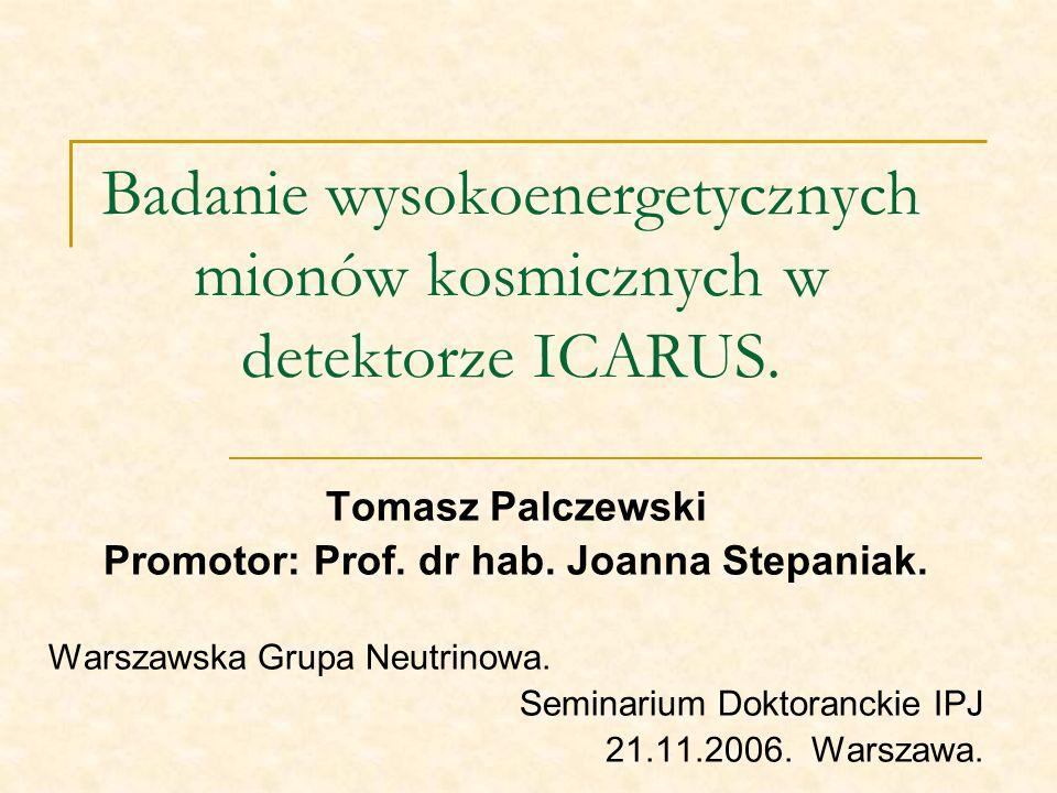 Badanie wysokoenergetycznych mionów kosmicznych w detektorze ICARUS. Tomasz Palczewski Promotor: Prof. dr hab. Joanna Stepaniak. Warszawska Grupa Neut