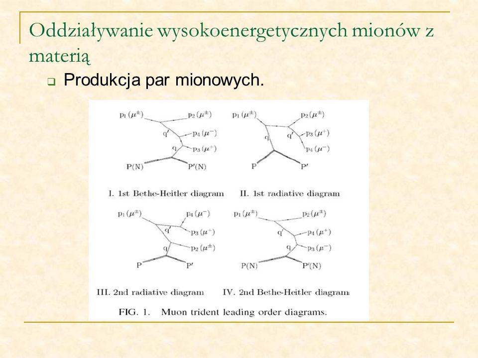 Oddziaływanie wysokoenergetycznych mionów z materią Produkcja par mionowych.