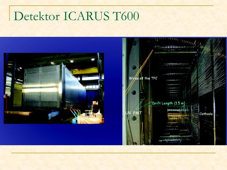 Detektor ICARUS T600