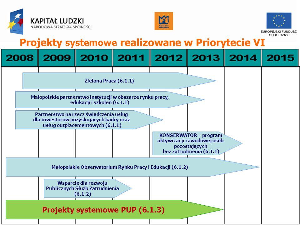 Projekty systemowe realizowane w Priorytecie VI Zielona Praca (6.1.1) Małopolskie partnerstwo instytucji w obszarze rynku pracy, edukacji i szkoleń (6.1.1) Partnerstwo na rzecz świadczenia usług dla inwestorów pozyskujących kadry oraz usług outplacementowych (6.1.1) KONSERWATOR – program aktywizacji zawodowej osób pozostających bez zatrudnienia (6.1.1) Małopolskie Obserwatorium Rynku Pracy i Edukacji (6.1.2) Wsparcie dla rozwoju Publicznych Służb Zatrudnienia (6.1.2) Projekty systemowe PUP (6.1.3)