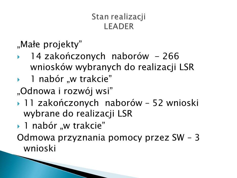 Małe projekty 14 zakończonych naborów - 266 wniosków wybranych do realizacji LSR 1 nabór w trakcie Odnowa i rozwój wsi 11 zakończonych naborów – 52 wn