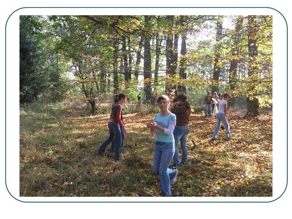 Zaj ę cia dydaktyczne na ś cie ż ce Uczniowie szkoły zarówno klas gimnazjalnych jak i podstawowych, jeśli tylko warunki atmosferyczne pozwalają korzystają z zajęć dydaktycznych na tej ścieżce prowadzonych przez nauczycieli przyrody, biologii, ekologii i geografii, a także uczniowie nauczania zintegrowanego.