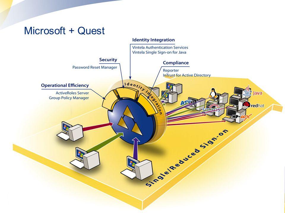 12 Microsoft + Quest