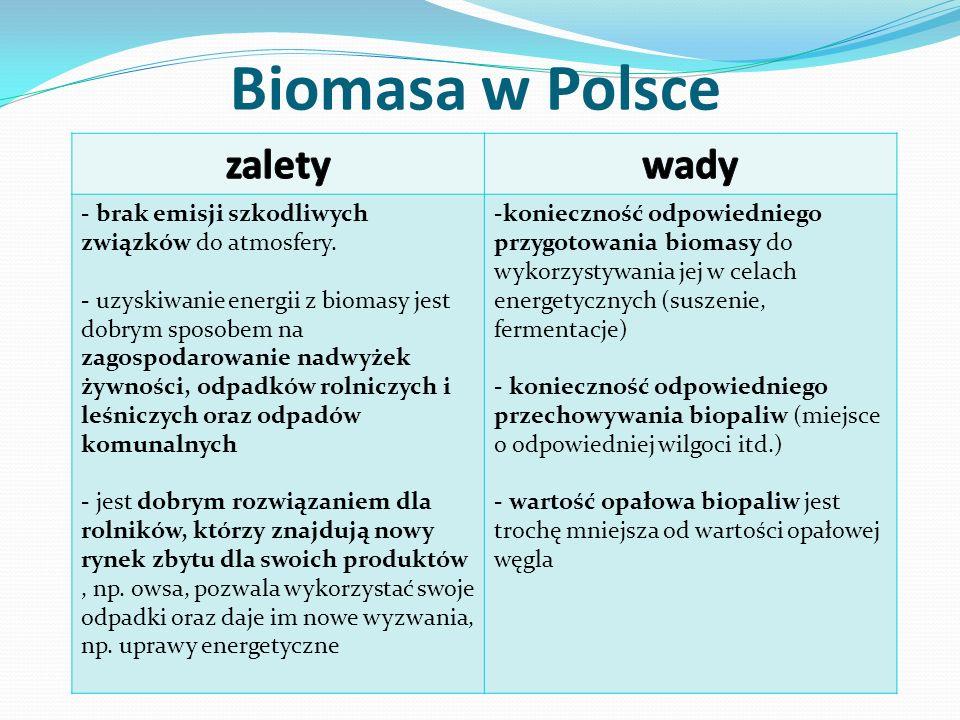 Biomasa w Polsce - brak emisji szkodliwych związków do atmosfery. - uzyskiwanie energii z biomasy jest dobrym sposobem na zagospodarowanie nadwyżek ży
