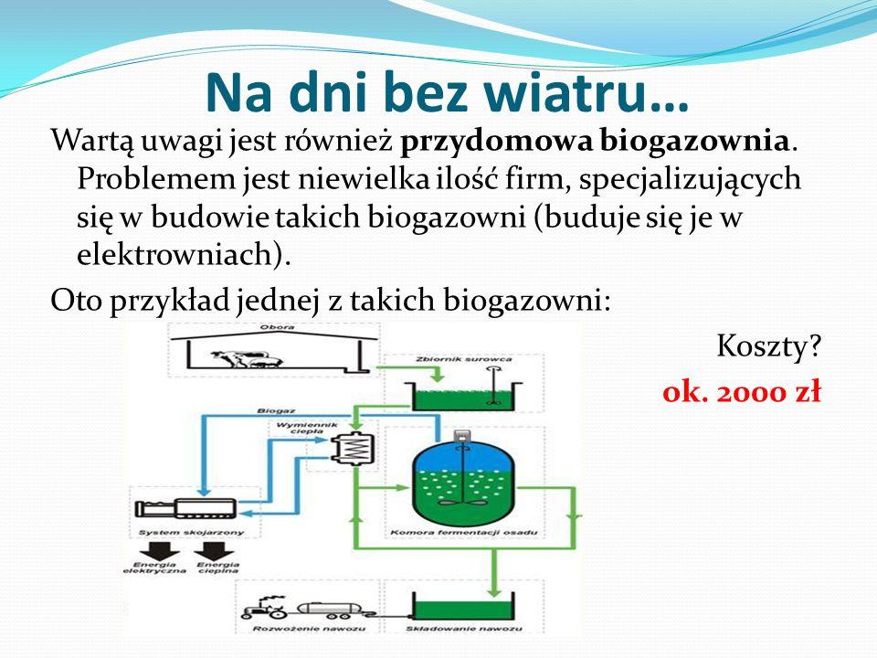 Na dni bez wiatru… Wartą uwagi jest również przydomowa biogazownia. Problemem jest niewielka ilość firm, specjalizujących się w budowie takich biogazo