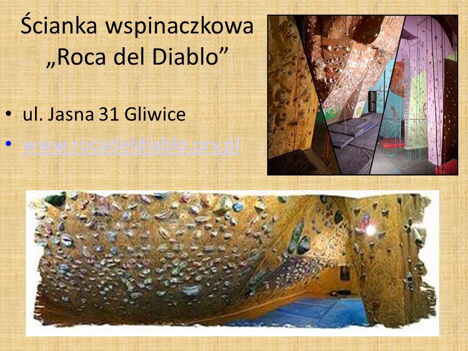 Ścianka wspinaczkowa Roca del Diablo ul. Jasna 31 Gliwice www.rocadeldiablo.prv.pl