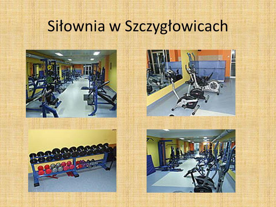 Siłownia w Szczygłowicach