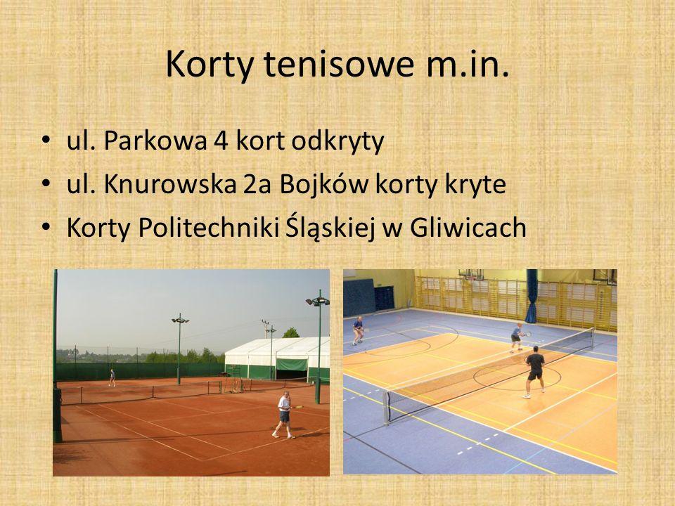 Korty tenisowe m.in. ul. Parkowa 4 kort odkryty ul. Knurowska 2a Bojków korty kryte Korty Politechniki Śląskiej w Gliwicach