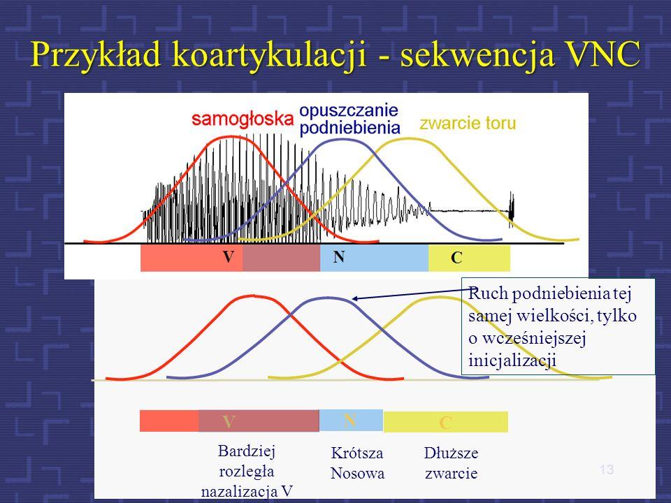 12 Przykład oddziaływania głosek na siebie - ubezdźwięcznianie Sąsiadujące ze sobą dźwięki mowy w łańcuchu mowy wzajemnie na siebie mniej lub bardziej