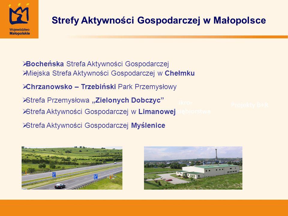 ikro- przedsiębiorstwa Projekty B+R Strefy Aktywności Gospodarczej w Małopolsce Bocheńska Strefa Aktywności Gospodarczej Miejska Strefa Aktywności Gos