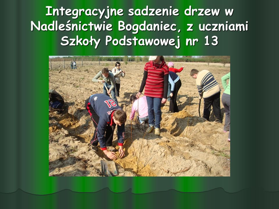Integracyjne sadzenie drzew w Nadleśnictwie Bogdaniec, z uczniami Szkoły Podstawowej nr 13