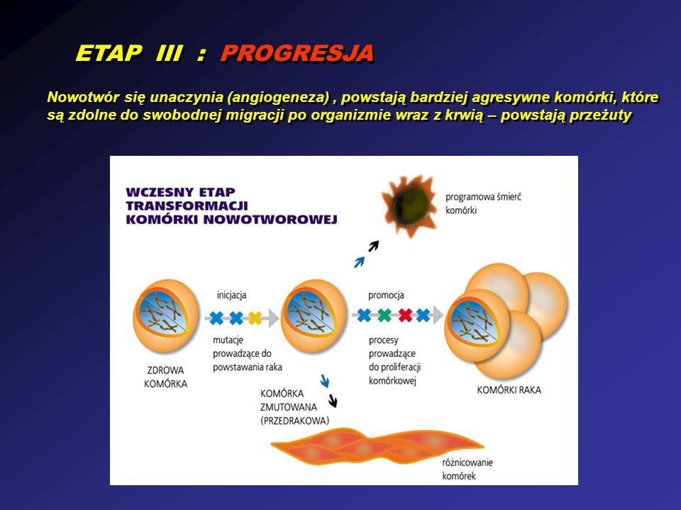 ETAP III : PROGRESJA Nowotwór się unaczynia (angiogeneza), powstają bardziej agresywne komórki, które są zdolne do swobodnej migracji po organizmie wraz z krwią – powstają przeżuty