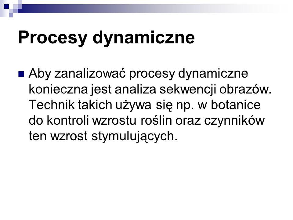 Procesy dynamiczne Aby zanalizować procesy dynamiczne konieczna jest analiza sekwencji obrazów. Technik takich używa się np. w botanice do kontroli wz