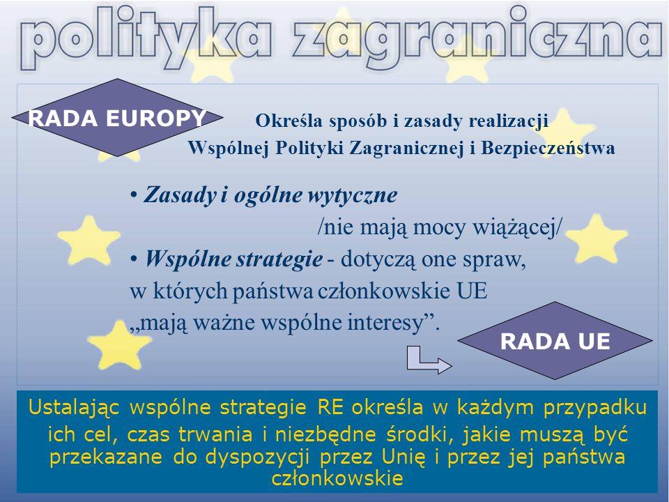 Ustalając wspólne strategie RE określa w każdym przypadku ich cel, czas trwania i niezbędne środki, jakie muszą być przekazane do dyspozycji przez Uni