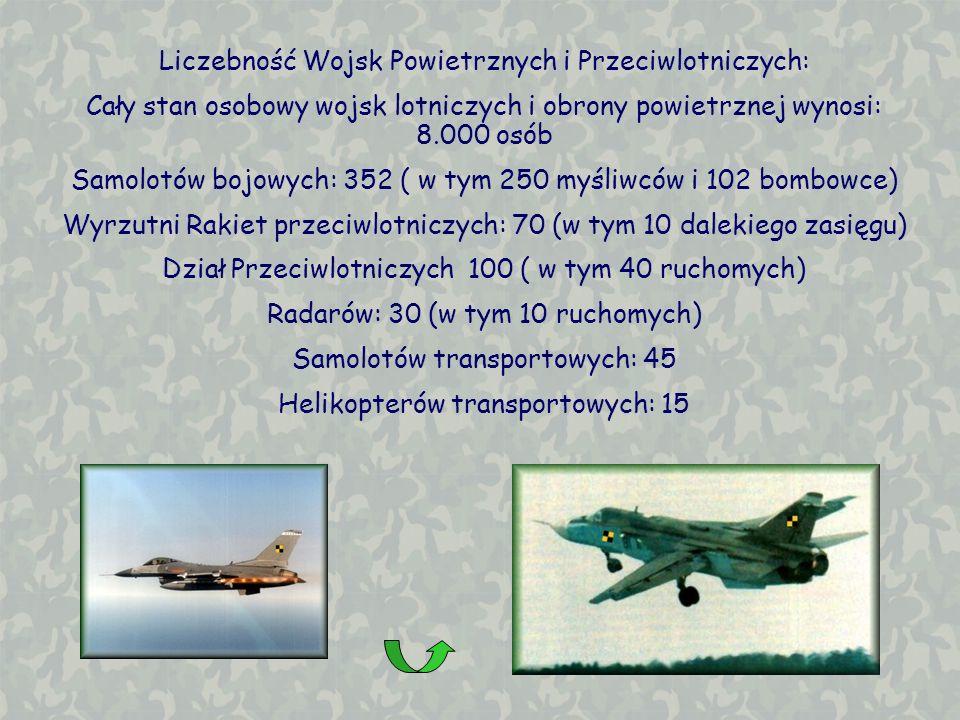 Liczebność Wojsk Powietrznych i Przeciwlotniczych: Cały stan osobowy wojsk lotniczych i obrony powietrznej wynosi: 8.000 osób Samolotów bojowych: 352