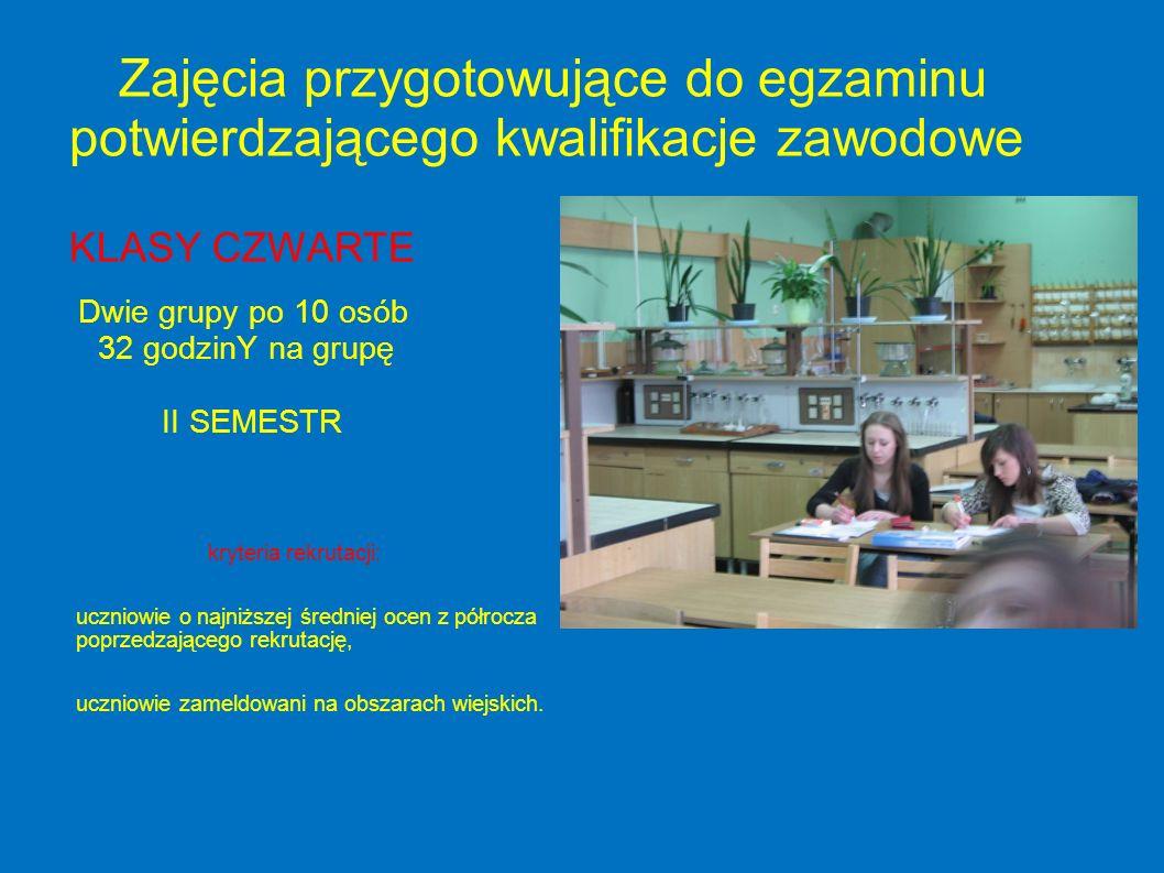Zajęcia przygotowujące do egzaminu potwierdzającego kwalifikacje zawodowe KLASY CZWARTE Dwie grupy po 10 osób 32 godzinY na grupę II SEMESTR kryteria