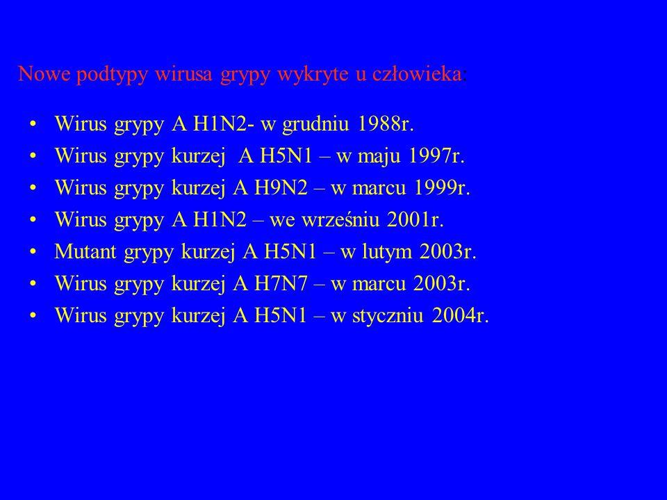 Nowe podtypy wirusa grypy wykryte u człowieka: Wirus grypy A H1N2- w grudniu 1988r. Wirus grypy kurzej A H5N1 – w maju 1997r. Wirus grypy kurzej A H9N