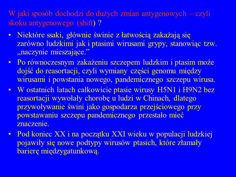 Nowe podtypy wirusa grypy wykryte u człowieka: Wirus grypy A H1N2- w grudniu 1988r.