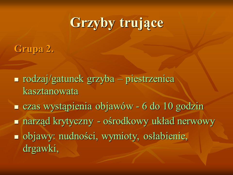 Grzyby trujące Grupa 2. rodzaj/gatunek grzyba – piestrzenica kasztanowata rodzaj/gatunek grzyba – piestrzenica kasztanowata czas wystąpienia objawów -