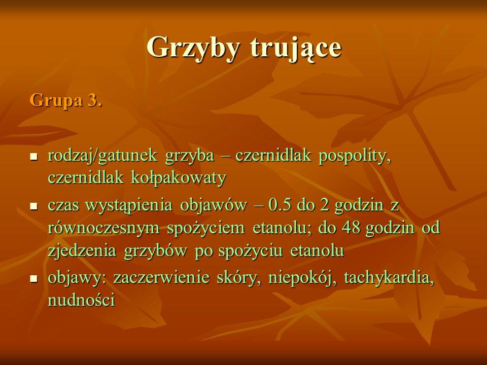 Grzyby trujące Grupa 3. rodzaj/gatunek grzyba – czernidlak pospolity, czernidlak kołpakowaty rodzaj/gatunek grzyba – czernidlak pospolity, czernidlak