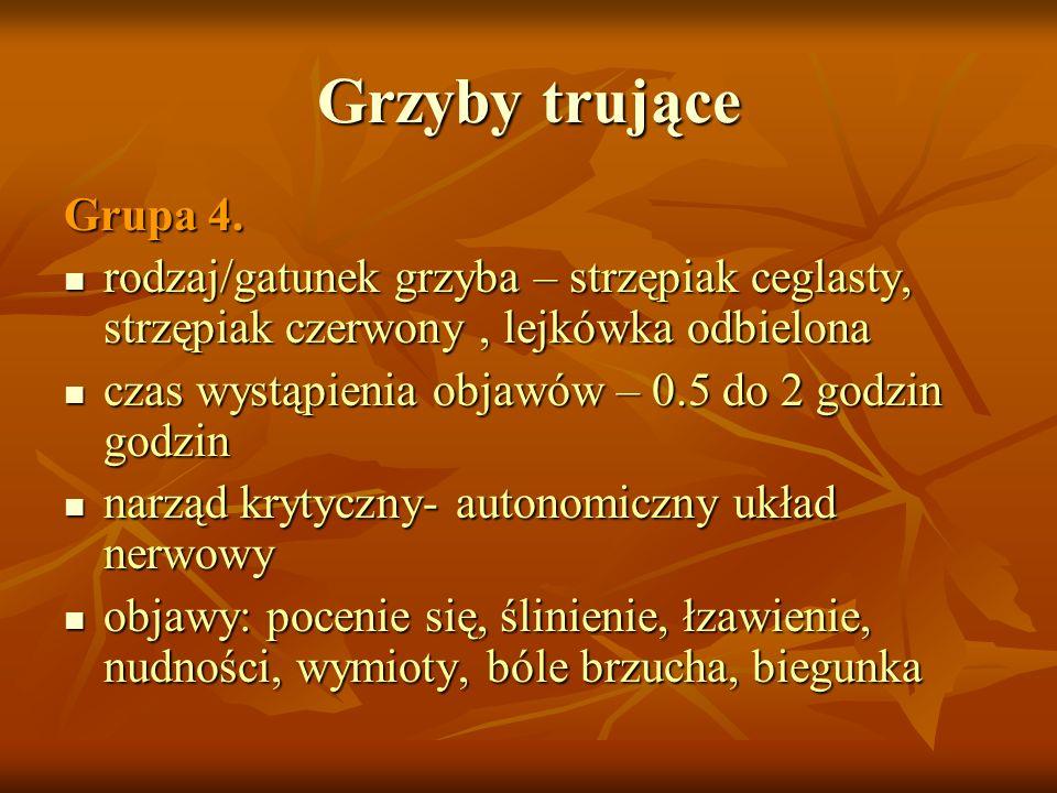 Grzyby trujące Grupa 4. rodzaj/gatunek grzyba – strzępiak ceglasty, strzępiak czerwony, lejkówka odbielona rodzaj/gatunek grzyba – strzępiak ceglasty,