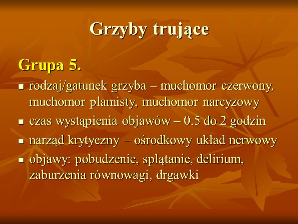Grzyby trujące Grupa 5. rodzaj/gatunek grzyba – muchomor czerwony, muchomor plamisty, muchomor narcyzowy rodzaj/gatunek grzyba – muchomor czerwony, mu