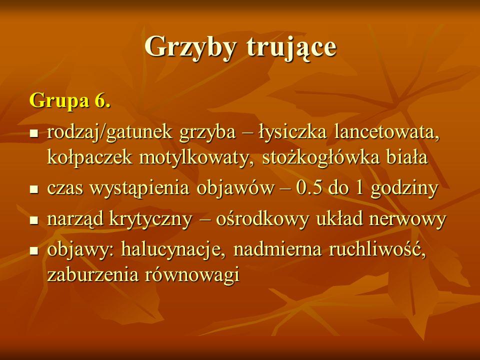 Grzyby trujące Grupa 6. rodzaj/gatunek grzyba – łysiczka lancetowata, kołpaczek motylkowaty, stożkogłówka biała rodzaj/gatunek grzyba – łysiczka lance