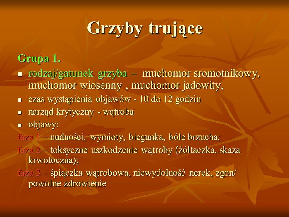 Grzyby trujące Grupa 1. rodzaj/gatunek grzyba – muchomor sromotnikowy, muchomor wiosenny, muchomor jadowity, rodzaj/gatunek grzyba – muchomor sromotni