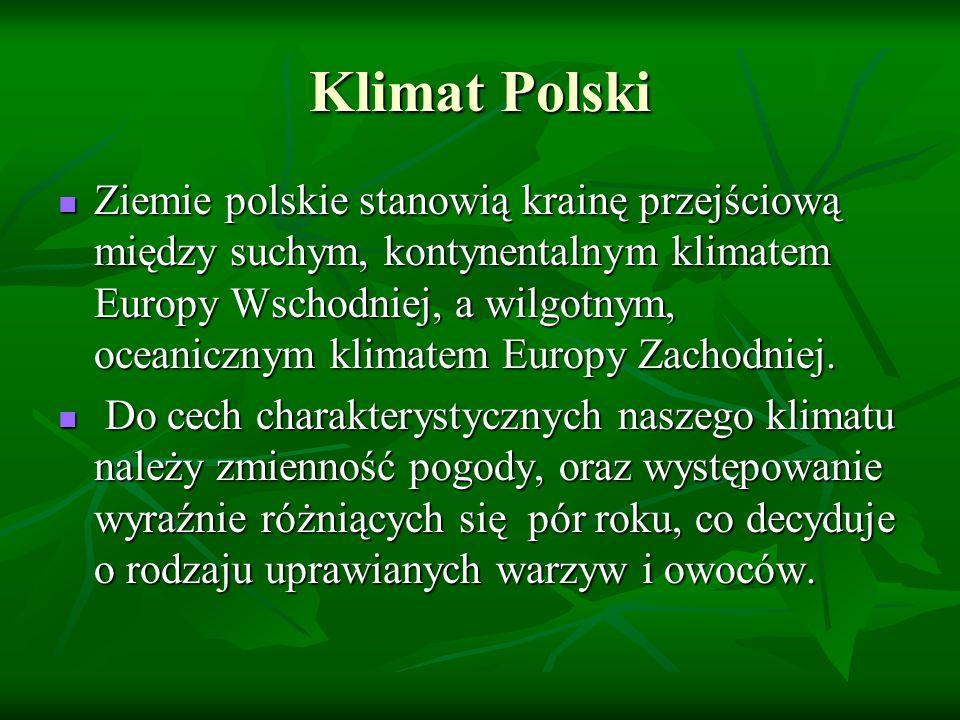 Rośliny uprawne w Polsce Ponad 60% powierzchni naszego kraju stanowią gleby mało urodzajne, a tylko 3,5% to gleby bardzo urodzajne.
