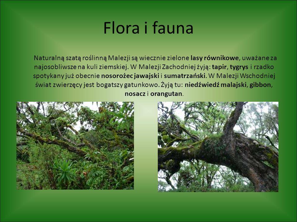 Flora i fauna Naturalną szatą roślinną Malezji są wiecznie zielone lasy równikowe, uważane za najosobliwsze na kuli ziemskiej. W Malezji Zachodniej ży