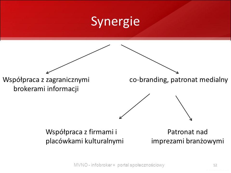 MVNO - infobroker + portal społecznościowy 12 Synergie Współpraca z zagranicznymi brokerami informacji co-branding, patronat medialny Współpraca z fir
