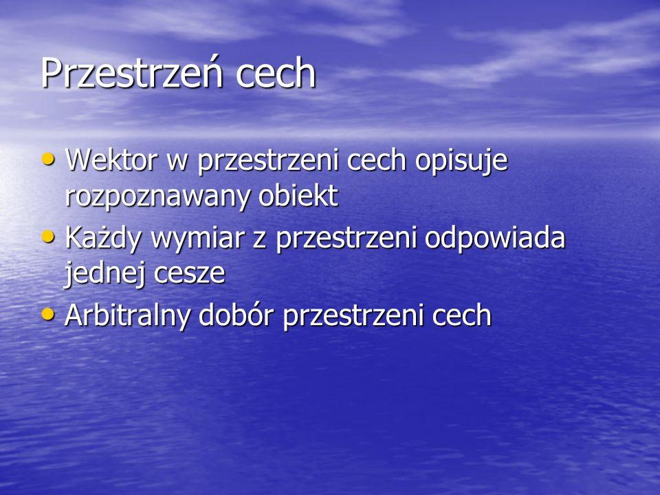 Przestrzeń cech Wektor w przestrzeni cech opisuje rozpoznawany obiekt Wektor w przestrzeni cech opisuje rozpoznawany obiekt Każdy wymiar z przestrzeni