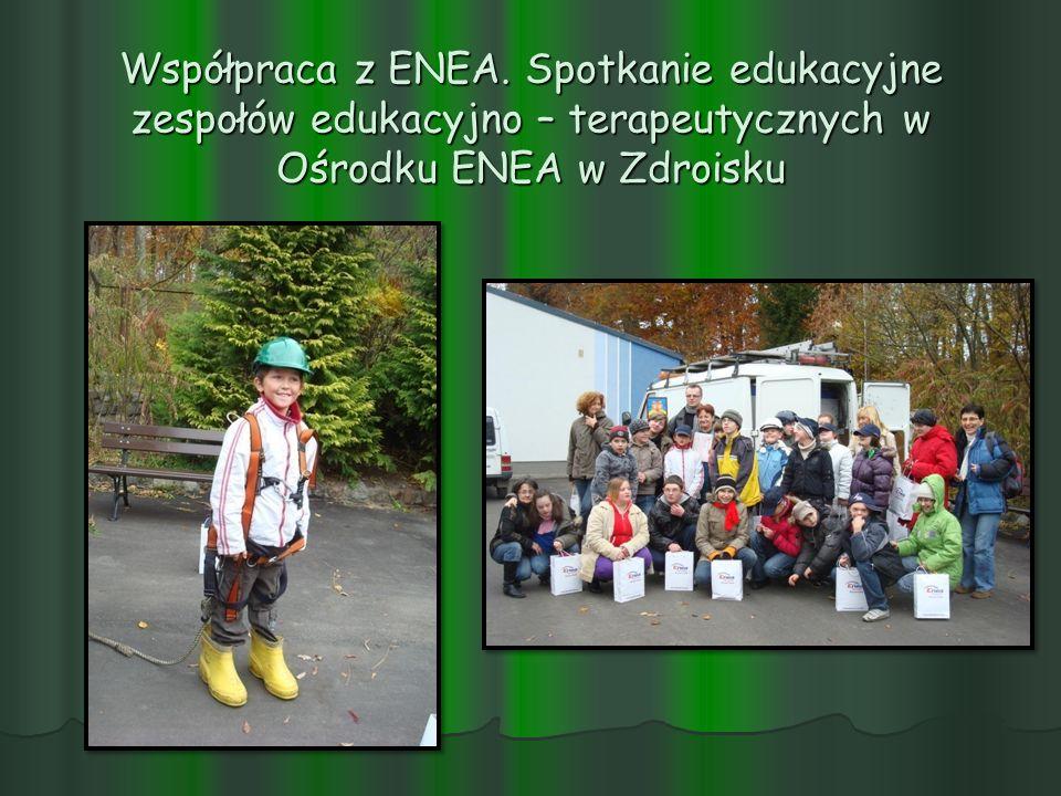 Współpraca z ENEA. Spotkanie edukacyjne zespołów edukacyjno – terapeutycznych w Ośrodku ENEA w Zdroisku