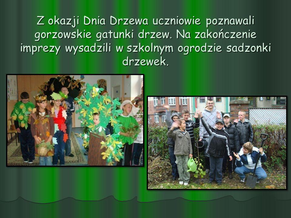 Z okazji Dnia Drzewa uczniowie poznawali gorzowskie gatunki drzew. Na zakończenie imprezy wysadzili w szkolnym ogrodzie sadzonki drzewek.