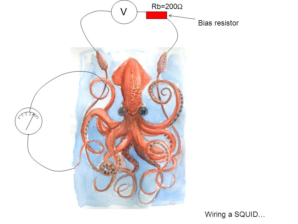 Wiring a SQUID… V Rb=200 Bias resistor