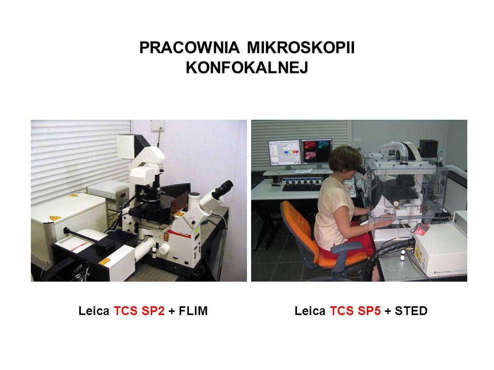 PRACOWNIA MIKROSKOPII KONFOKALNEJ Leica TCS SP2 + FLIMLeica TCS SP5 + STED