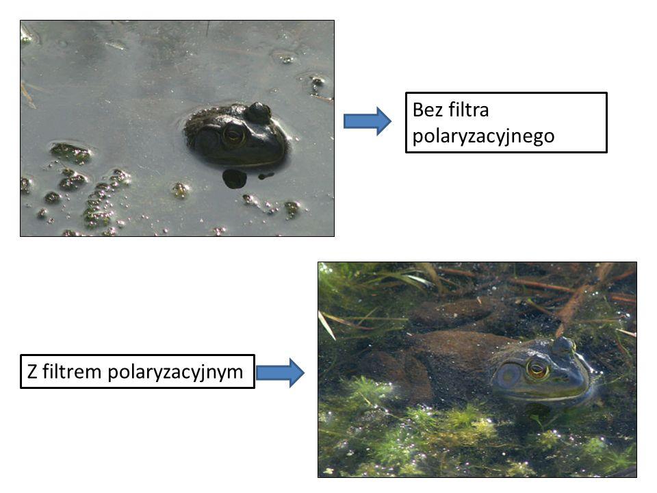 Bez filtra polaryzacyjnego Z filtrem polaryzacyjnym