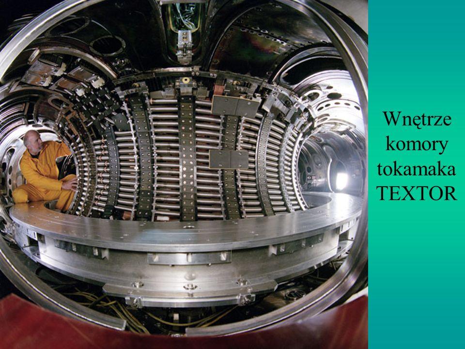 Wnętrze komory tokamaka TEXTOR