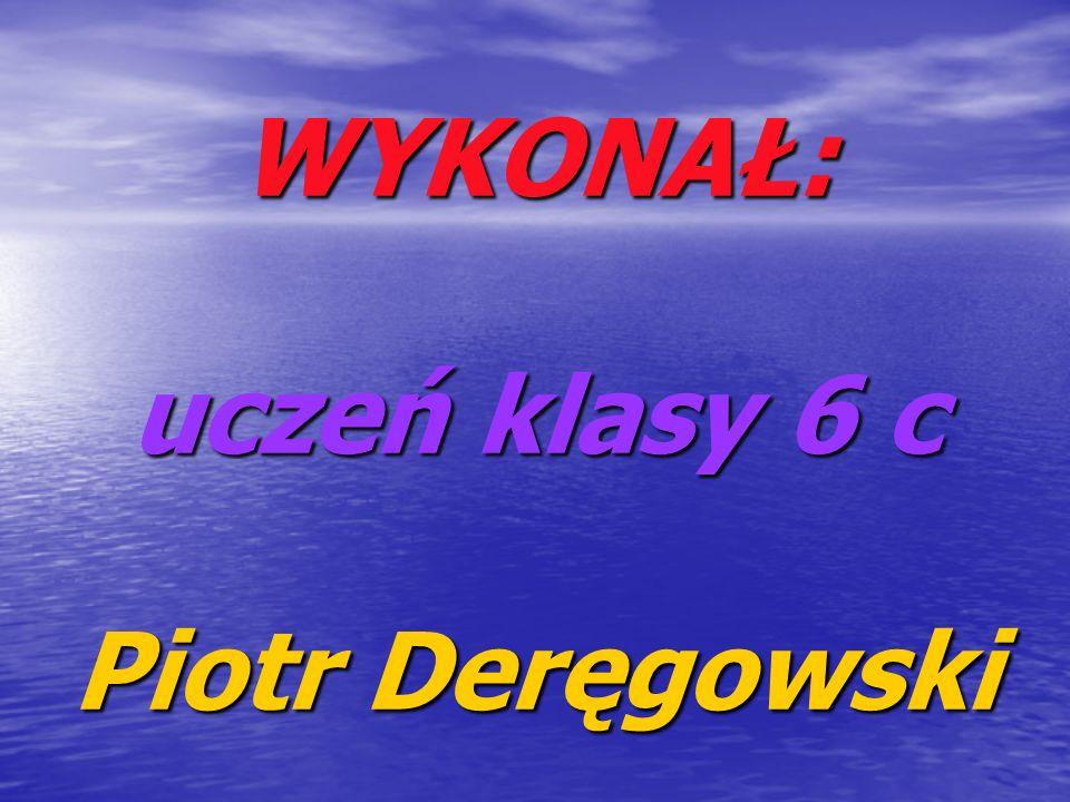 WYKONAŁ: uczeń klasy 6 c Piotr Deręgowski