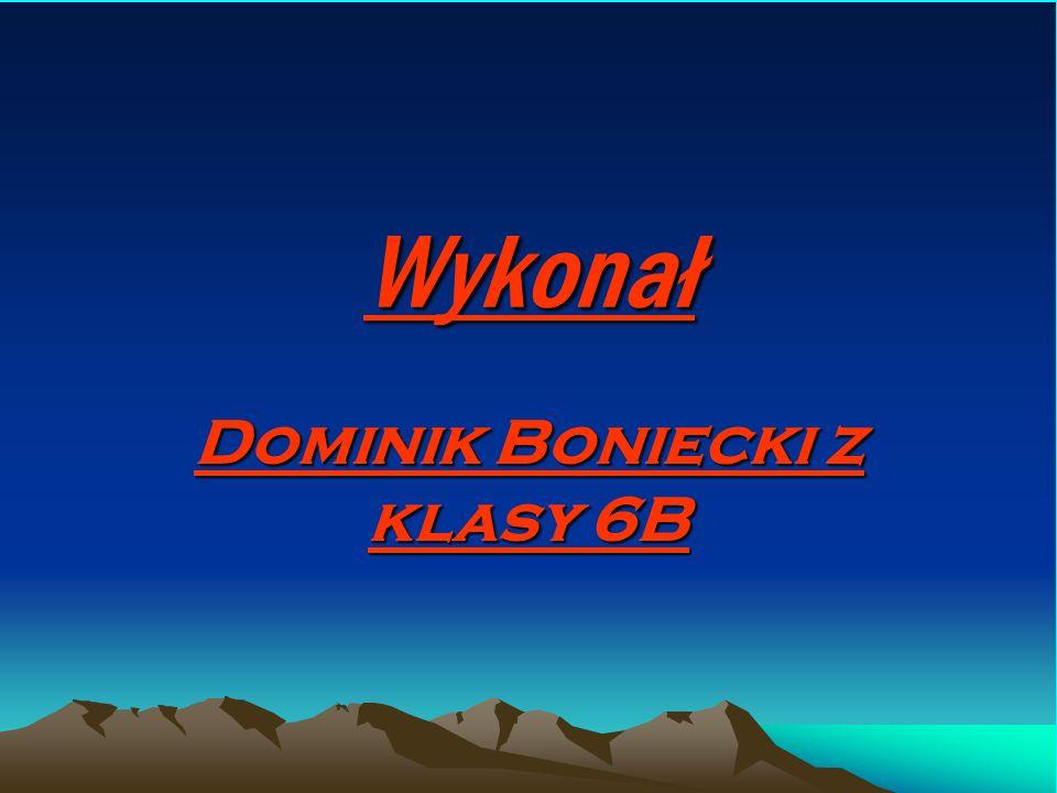 Wykonał Dominik Boniecki z klasy 6B