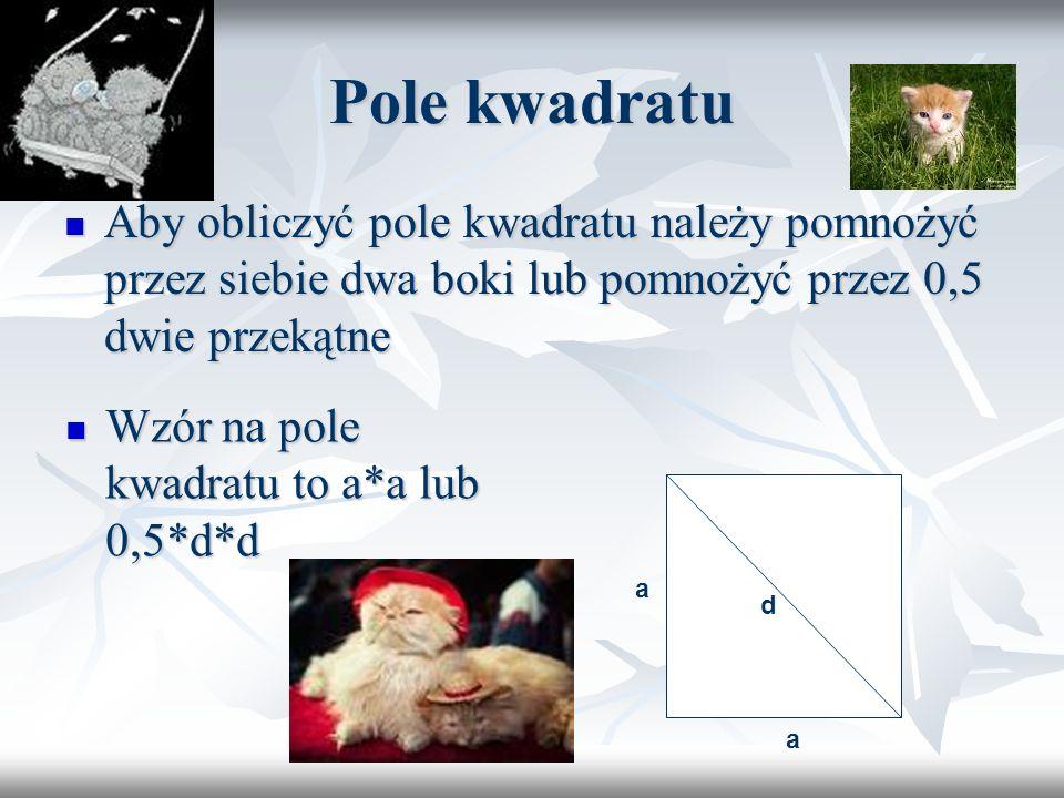 Pola figur płaskich Karolinka Pachucy kl.6d