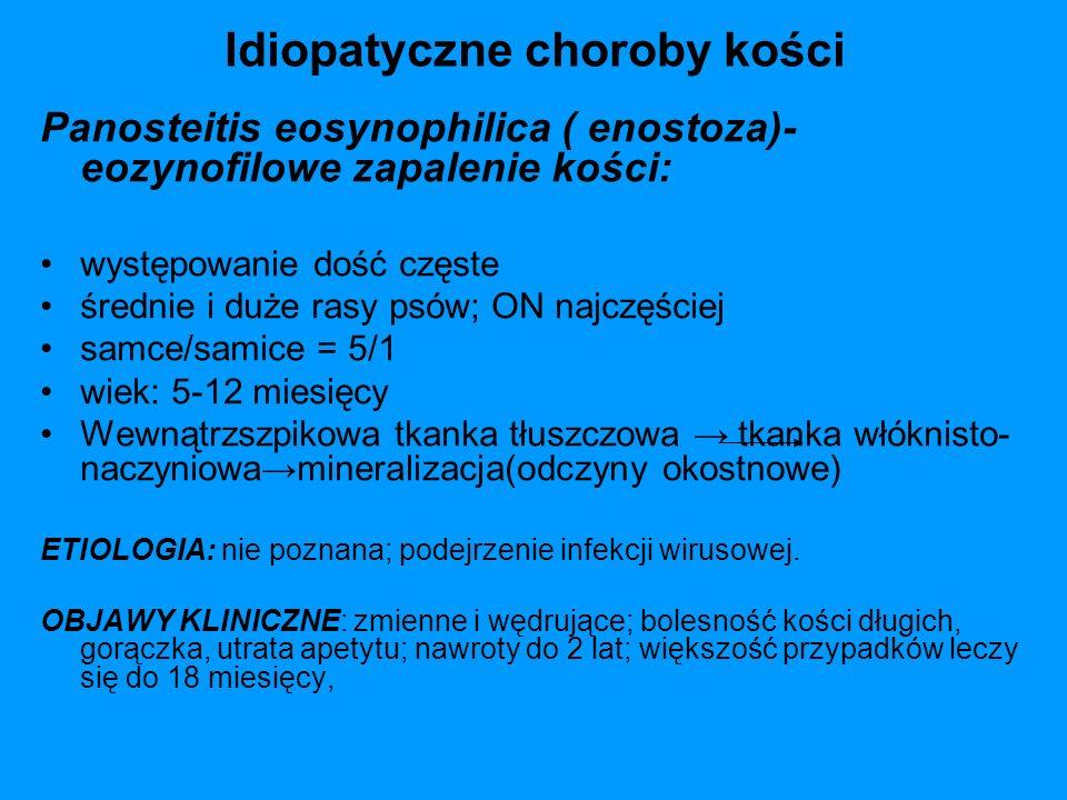 Idiopatyczne choroby kości Panosteitis eosynophilica ( enostoza)- eozynofilowe zapalenie kości: występowanie dość częste średnie i duże rasy psów; ON
