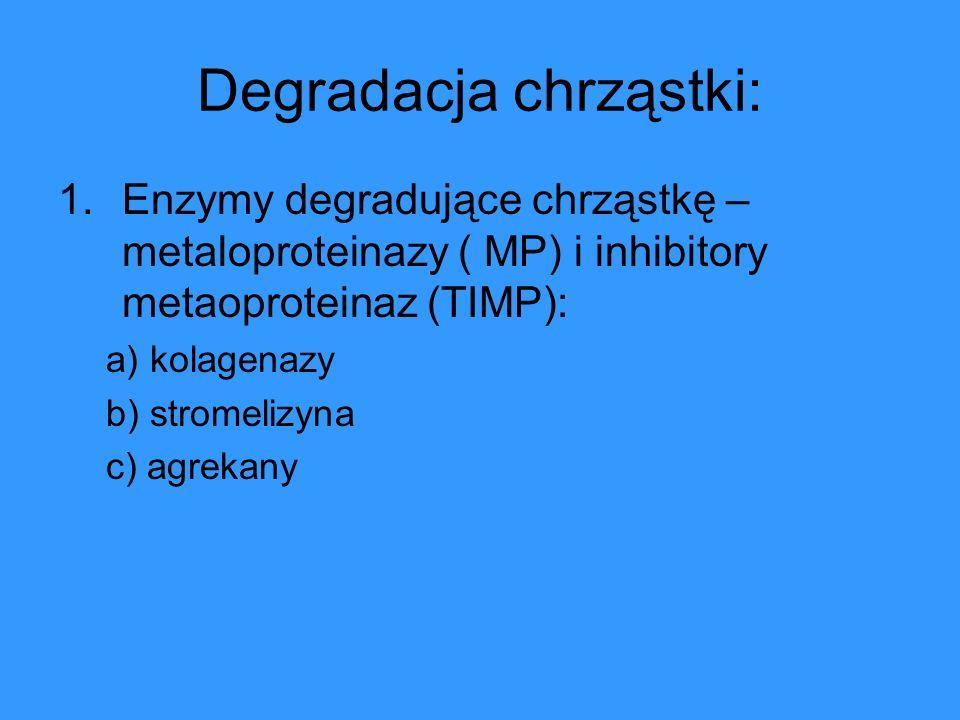 Degradacja chrząstki: 1.Enzymy degradujące chrząstkę – metaloproteinazy ( MP) i inhibitory metaoproteinaz (TIMP): a) kolagenazy b) stromelizyna c) agr