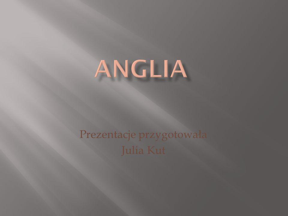 Przy robieniu prezentacji Korzystano ze strony www. anglia.endi.pl/