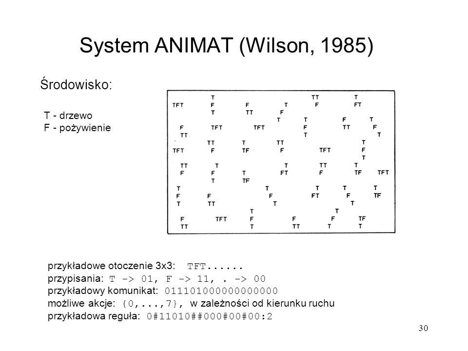 30 Środowisko: System ANIMAT (Wilson, 1985) T - drzewo F - pożywienie przykładowe otoczenie 3x3: TFT...... przypisania: T -> 01, F -> 11,. -> 00 przyk