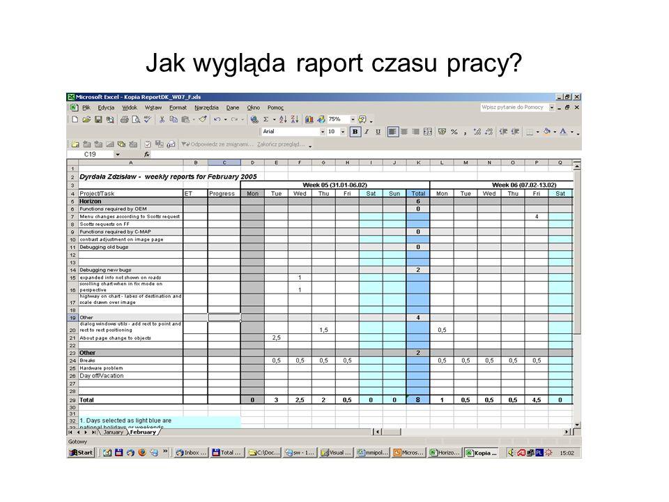 Jak wygląda raport czasu pracy?